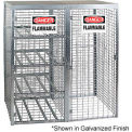 Cylinder Storage Manual 2 Door Combo Cabinet