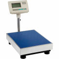 Industrial Bench Scale & Floor Scale