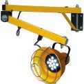 """TPI DKL40VALED Premium Dock Light - 40"""" Arm Length - LED Bulb"""