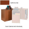 Wood Hinged Door Cabinet Medium Oak