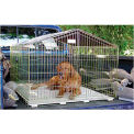 """Lucky Dog Travel Containment 40""""W x 40""""L Black"""