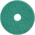 "Diamond Polishing 20"" Green 3000 Grit Polishing & Daily Maintenance Pad - 2 Per Case"