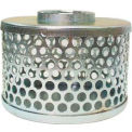 "Apache 70001500 3"" FNPT Plated Steel Round Hole Strainer"