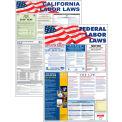 "North Carolina and Federal Labor Law Poster Combo - 24"" x 36"""