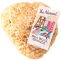 "11-12"" Natural Sea Wool Sponge #1 Cut - 2 Pack"