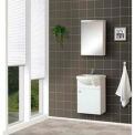 DreamLine™ Wall-Mounted Bathroom Vanity DLVRB-101-WH W/Counter & Medicine Cabinet, 17""