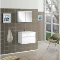 "DreamLine™ Wall-Mounted Bathroom Vanity DLVRB-103-WH, Counter & Medicine Cabinet, 24""W"