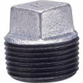 1-1/2 In Galvanized Malleable Cored Plug 150 PSI Lead Free