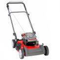 "Snapper 22"" 6.75 TP Push Walk Mower"
