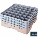 """Cambro 36S1058110 - Camrack  Glass Rack Low Profile 36 Compartments 11"""" Max. Height Black - Pkg Qty 2"""