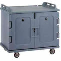 Meal Delivery Cart Low Profile, 2 Doors, 48-1/2x32-1/2x44, Granite Gray