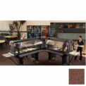 "Versa Food Bars™Work Table, Cold Food, 60"" x 36"" (Standard), 6"" Swivel Casters, Bronze"