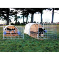 "Small Animal Hut 12'W x 6'5""H x 12'2""L"
