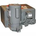 Watchman Unit WC6-20B Simplex Cast Iron Receiver