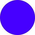 "Purple Discs 1/2 "" Dia."