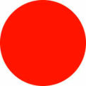 """Fluorescent Red Discs 3/4"""" Dia."""