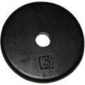 Iron Disc Weight Plate, 5 lb.