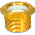 "Brass Fluid Level Sight Glass w/o Reflector - 1"" NPT Thread - J.W. Winco 1PTK8"