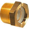 "Brass Fluid Level Sight Glass w/ Reflector - 1/2"" NPT Thread - J.W. Winco 8PTK1"