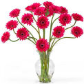 Nearly Natural Gerber Daisy Liquid Illusion Silk Flower Arrangement, Beauty