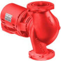 Cast Iron 2 IN. NFI Pump 1/6 HP Single Phase