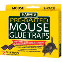 Harris Mouse Glue Trap 2 Pack HMG-2