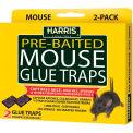 Harris Mouse Glue Trap 2 Pack HMG-2 - Pkg Qty 24