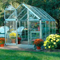 Snap & Grow™ 6' x 8' Greenhouse, Silver