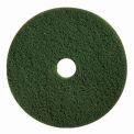 """Boss Cleaning Equipment 22"""" Green-Scrub Pad - Pkg Qty 5"""