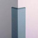 Top Cap For CG-10 Corner Guard, Taupe, Vinyl