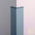 Top Cap For CG-10 Corner Guard, Beige Desert, Vinyl