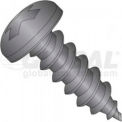 4 X 1 Phillips Pan Head Tapping Screw, Package Of 100