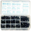 Socket Head Cap Screw Kit - Large Drawer - Black Alloy Steel - 6-32 to 3/8-16 - 24 Items, 750 Pieces