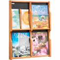 Expose 4 Magazine 8 Pamphlet Display - Medium Oak/Black