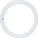 Satco S6500 FC8T9/CW/RS 22W Fluorescent w/ 4 Pin Base - Cool White