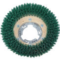 "Qleeno 12"" Green Grit Brush - 813011"