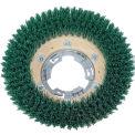 "Qleeno 12"" Green Grit Brush - 813011"