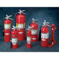 Amerex® 10 Pound ABC Dry Chemical Fire Extinguisher With Aluminum Valve