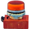 Springer Controls N5CLAD, Pilot Light - Amber