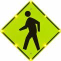 "Tapco® 2180-00254 BlinkerSign® Flashing LED Pedestrian Crossing Sign W11-2, 30""W, 110V"