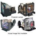 Original Manufacturer Optoma Projector Lamp:BL-FP230D