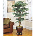 OfficeScapesDirect 5' Pagoda Ming Aralia Silk Tree