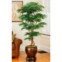 OfficeScapesDirect 6' Pagoda Ming Aralia Silk Tree