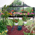 Junior Victorian Greenhouse Accessory Kit
