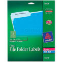 Avery® Self-Adhesive Filing Labels, 1/3 Cut, 2/3 x 3-7/16, Clear, 450/Pack