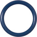 Metal Detectable Viton O-Ring-Dash 020 - Pack of 10