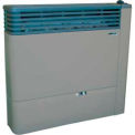 US Stove Direct Vent Gas Heater, DV21L, LP Gas, 21000 BTU