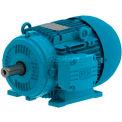 WEG IEC TRU-METRIC™ IE3 Motor, 00152ET3WAL100L, 2HP, 1200/1000RPM, 3PH, 460V, 100L, TEFC