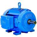 WEG NEMA Premium Efficiency Motor, 01012ET3E256T-W22, 10 HP, 1200 RPM, 208-230/460V, TEFC, 256T, 3PH