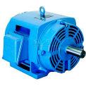 WEG NEMA Premium Efficiency Motor, 01018OT3E215T, 10 HP, 1800 RPM, 208-230/460 V, ODP, 213/5T, 3 PH
